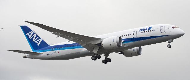 787-ana1