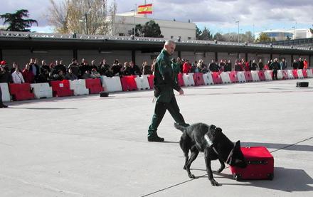 perros Guardia Civil