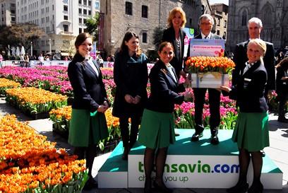 50.000 tulipanes se han regalado a los viandantes y el resto se plantarán