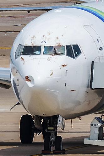 El 737 de Transavia, ayer sábado en el aeropuerto de Girona / Foto: Albert Frigolé