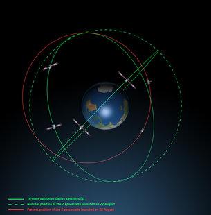Vista lateral de las órbitas